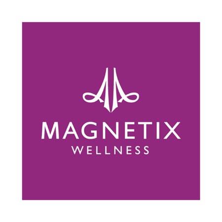 logo_kunde_magnetics