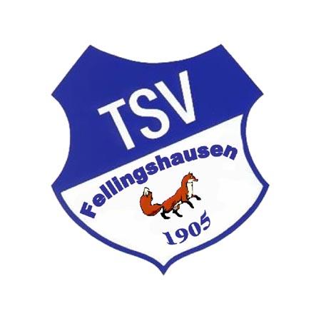 logo_kunde_tsv-fellinghausen